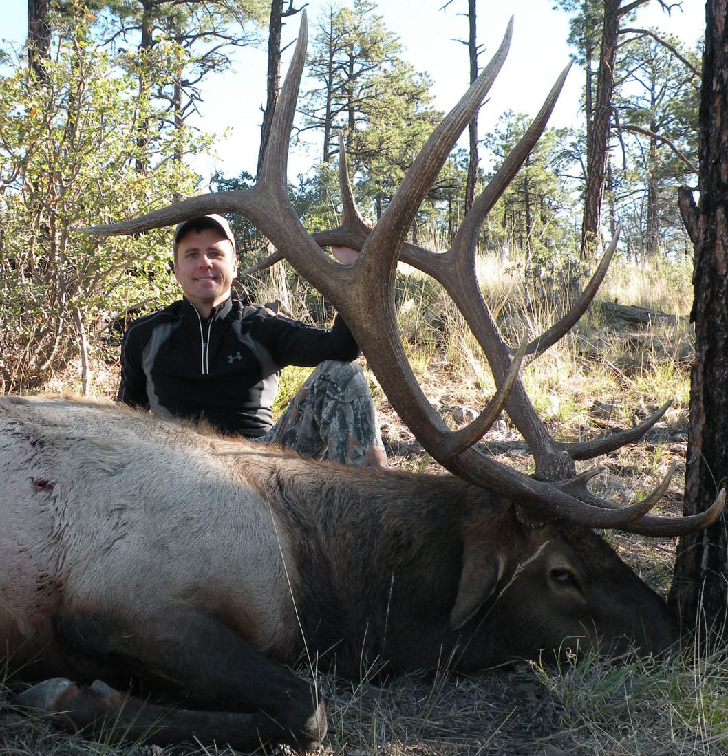 New Mexico Elk Hunts
