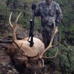 NM Elk Hunting