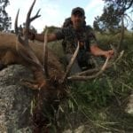 NM Elk Hunting