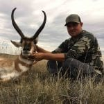 New Mexico Pronghorn